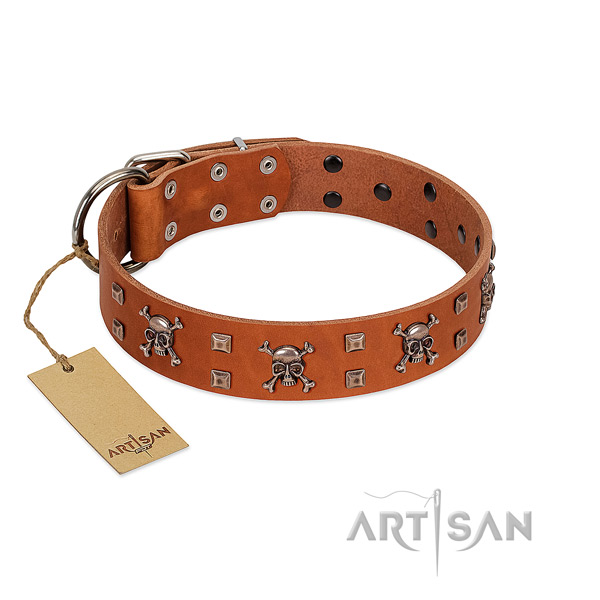 Natural leather dog collar with incredible decorations