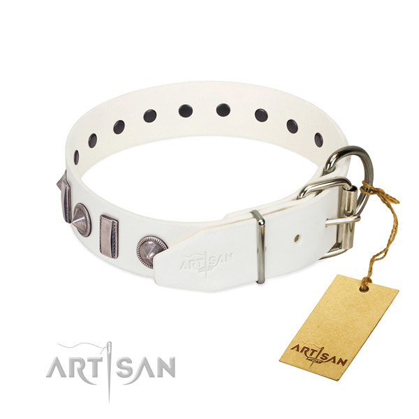 Easy wearing natural leather dog collar with extraordinary studs