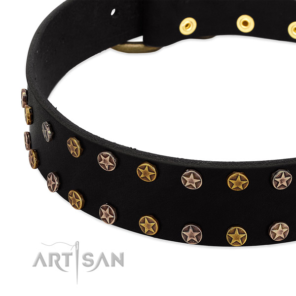 Exquisite adornments on full grain natural leather collar for your canine