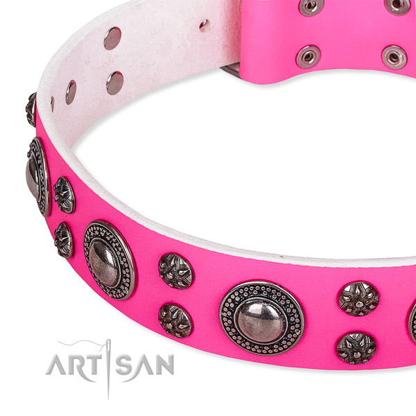 Basic training decorated dog collar of top quality leather