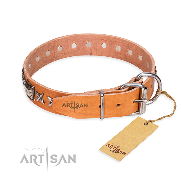 Fine quality embellished dog collar of full grain genuine leather