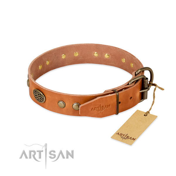 Reliable adornments on full grain leather dog collar for your doggie