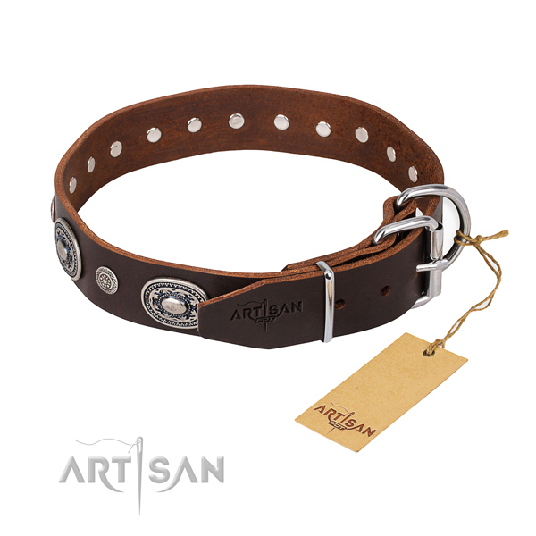 High quality full grain genuine leather dog collar handcrafted for everyday walking