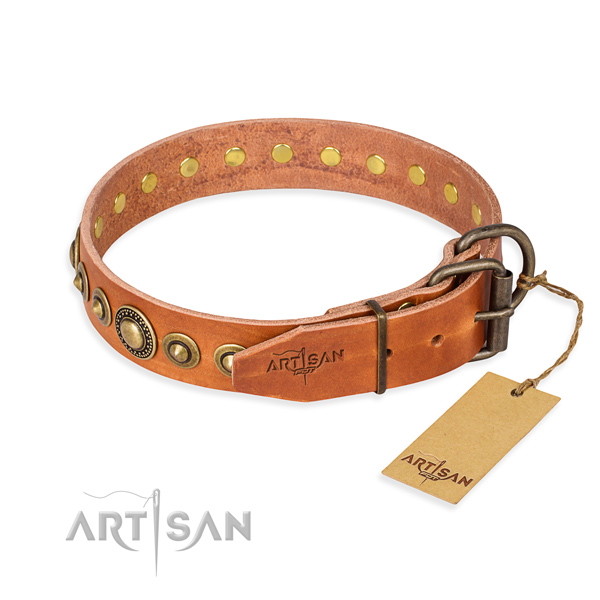 Top notch full grain leather dog collar created for daily walking