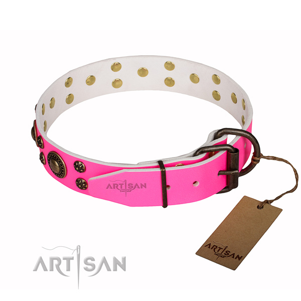 Easy wearing studded dog collar of reliable leather