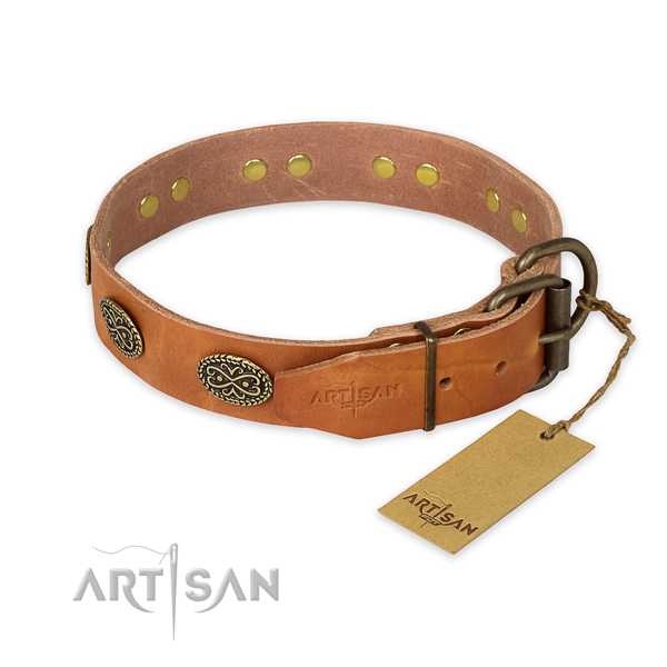 Corrosion proof traditional buckle on full grain leather collar for everyday walking your doggie