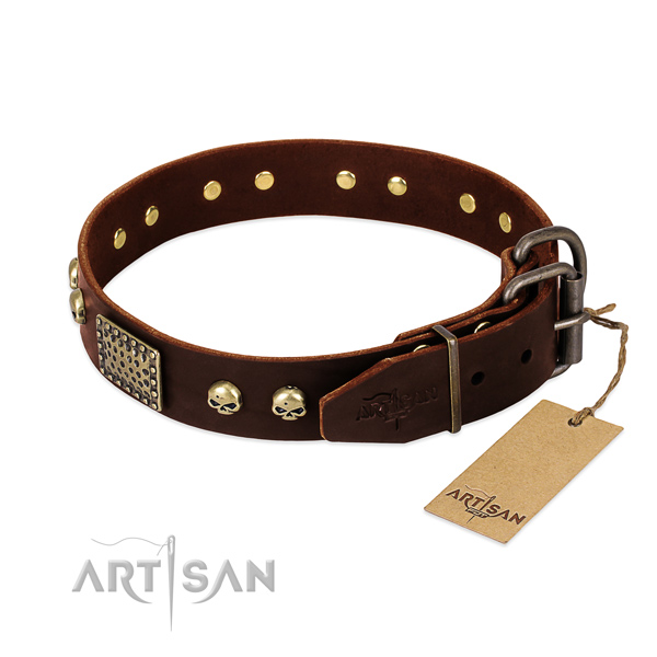 Reliable traditional buckle on comfy wearing dog collar