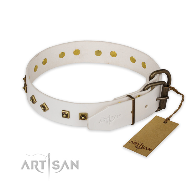 Corrosion proof fittings on leather collar for basic training your canine