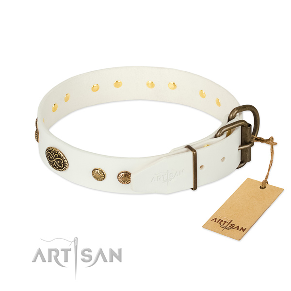 Durable adornments on natural leather dog collar for your four-legged friend