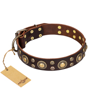 """Flower Melody"" FDT Artisan Brown Leather Amstaff Collar with Mixed Studs"