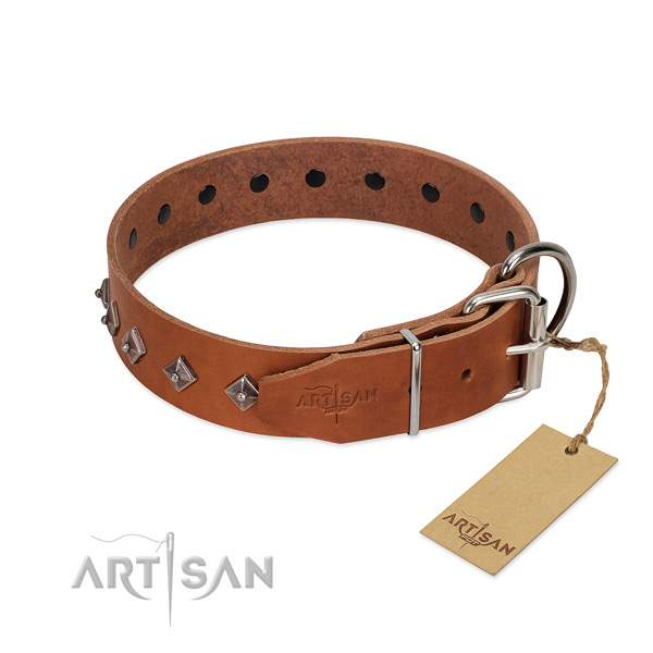 Full grain leather dog collar with unique adornments for your pet