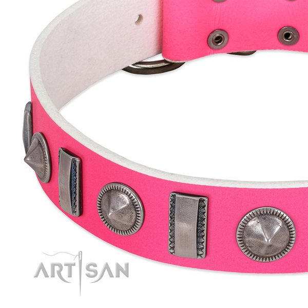 Awesome decorated genuine leather dog collar for walking
