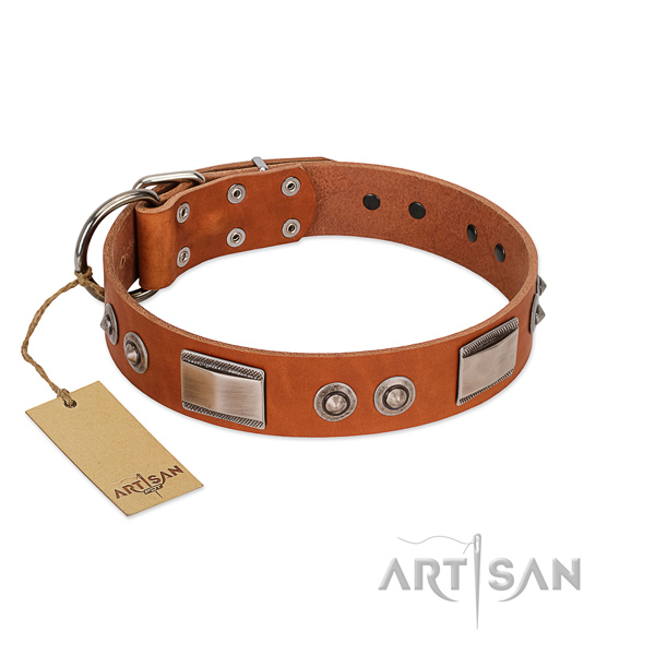 Top quality leather collar with studs for your pet