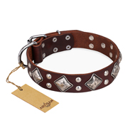 """King of Grace"" FDT Artisan Stylish Leather Amstaff Collar with Old Silver-Like Plated Decorations"