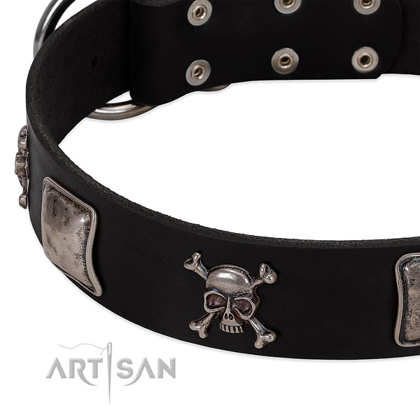 Rust resistant D-ring on leather dog collar