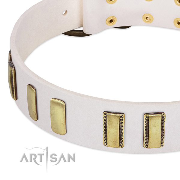 Best quality natural leather dog collar with studs for comfy wearing