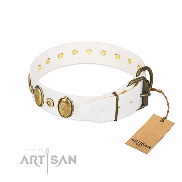 Rust-proof studs on soft to touch full grain natural leather dog collar