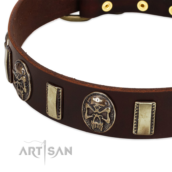 Reliable buckle on full grain leather dog collar for your pet