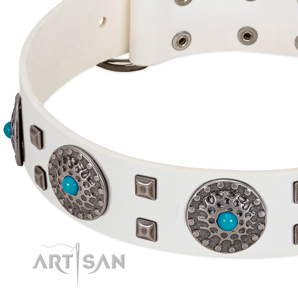 Reliable full grain natural leather dog collar with remarkable adornments