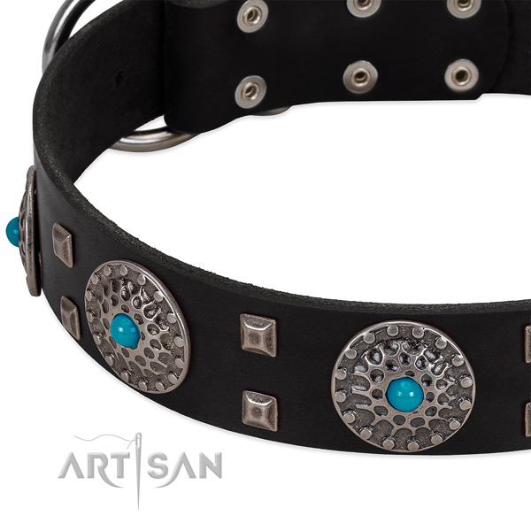 Gentle to touch leather dog collar with top notch embellishments