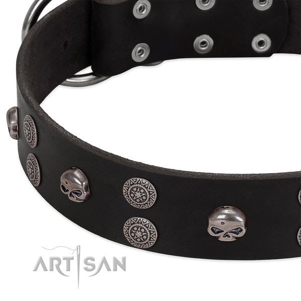 Soft to touch full grain genuine leather dog collar with trendy studs