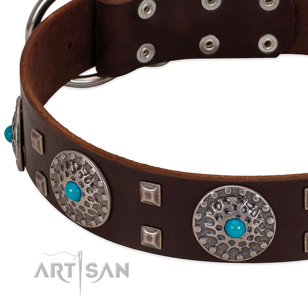 Best quality full grain leather dog collar with designer embellishments
