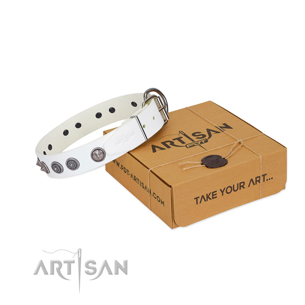 Corrosion proof hardware on leather dog collar for stylish walking your four-legged friend