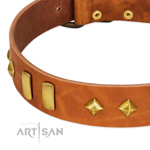 Easy wearing genuine leather dog collar with remarkable embellishments