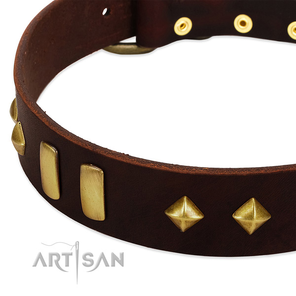 High quality full grain natural leather dog collar with unusual decorations