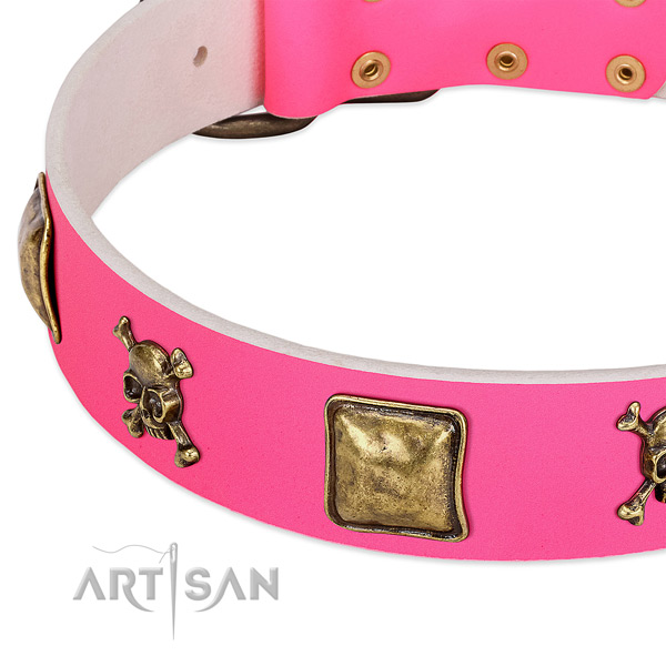 High quality natural leather dog collar with unusual embellishments