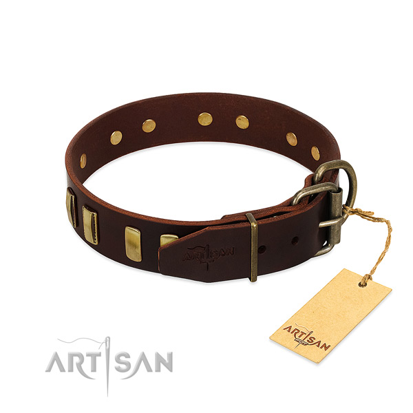 Natural leather dog collar with strong D-ring for walking