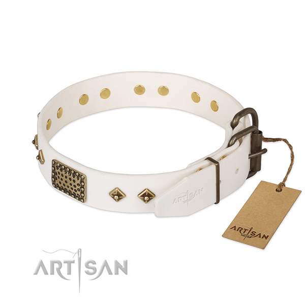 Genuine leather dog collar with durable D-ring and studs