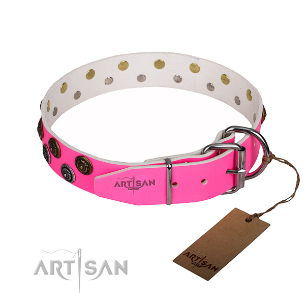 Comfortable wearing studded dog collar of top quality full grain leather