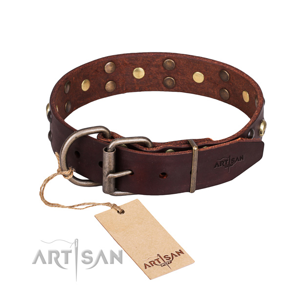 Daily use adorned dog collar of quality full grain genuine leather