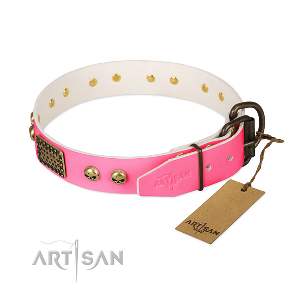 Durable adornments on daily use dog collar