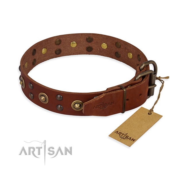 Durable D-ring on leather collar for your impressive four-legged friend