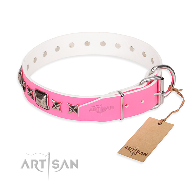 Durable studded dog collar of leather
