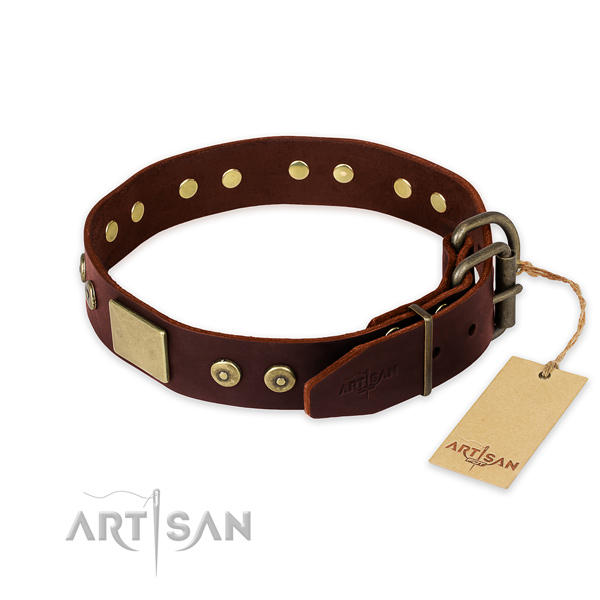 Rust resistant decorations on stylish walking dog collar