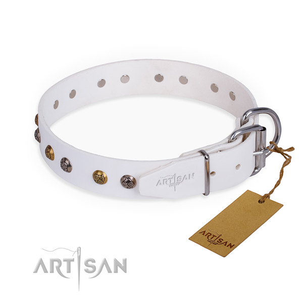 Genuine leather dog collar with unusual rust resistant studs