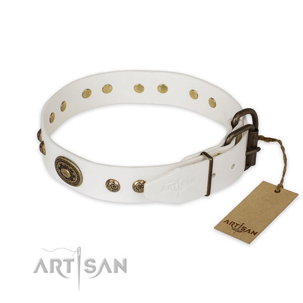 Reliable fittings on natural genuine leather collar for everyday walking your four-legged friend