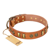 """Natural Beauty"" FDT Artisan Tan Leather Amstaff Collar with Old Bronze-like Circles and Plates"