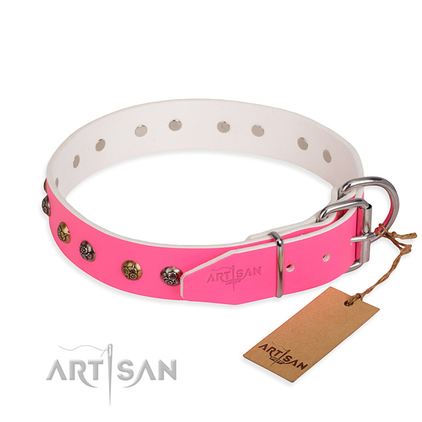 Full grain natural leather dog collar with incredible rust resistant embellishments