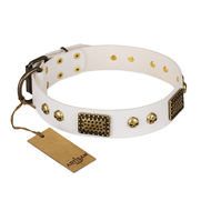 """Lost Treasures"" FDT Artisan White Leather Amstaff Collar with Old Bronze Look Plates and Skulls"