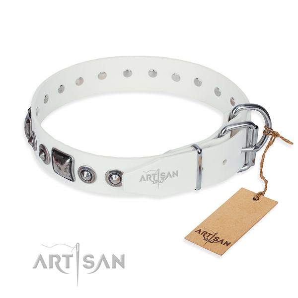 Reliable full grain leather dog collar made for basic training