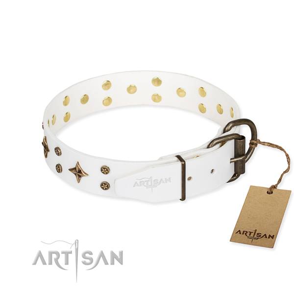 Daily use adorned dog collar of top notch full grain natural leather