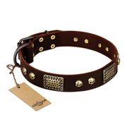 """Magic Amulet"" Brown Leather Amstaff Collar with Skulls and Plates"