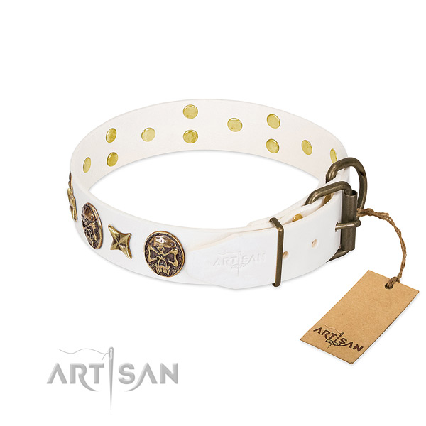 Durable traditional buckle on leather collar for walking your pet