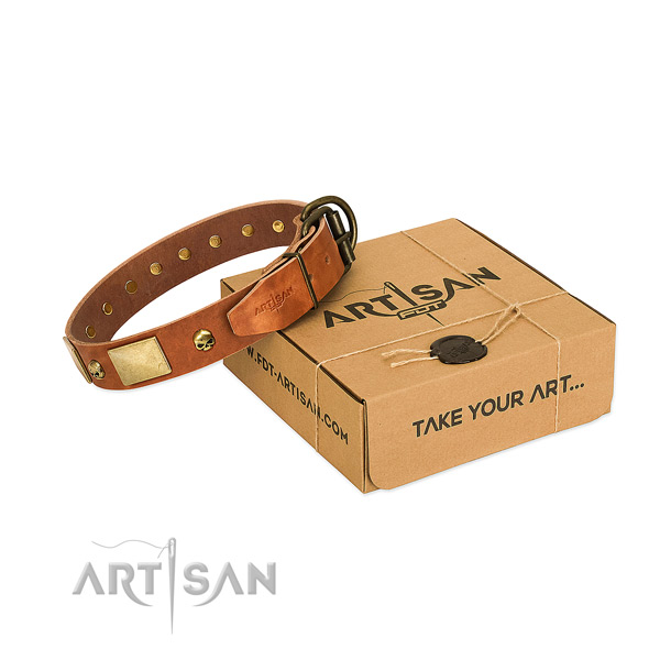 Gentle to touch leather dog collar with designer adornments