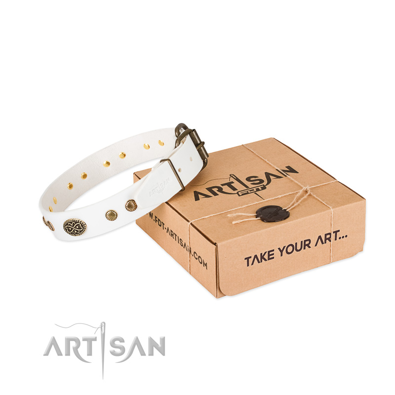 Rust-proof adornments on natural leather dog collar for your dog