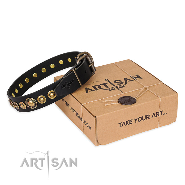 Top rate full grain leather dog collar made for everyday walking